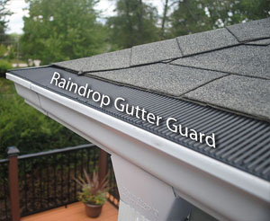 Raindrop® Gutter Guards
